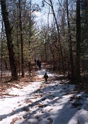An Early Spring Hike