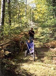 Hiking Chequamegon
