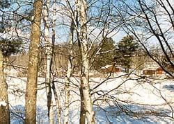 Peaceful Winter Blanket